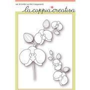 P-orchidee-timbri