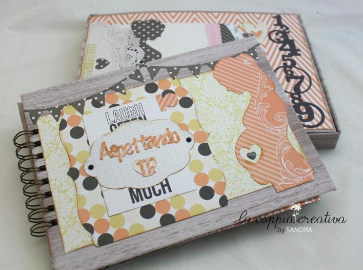 diario gravidanza3